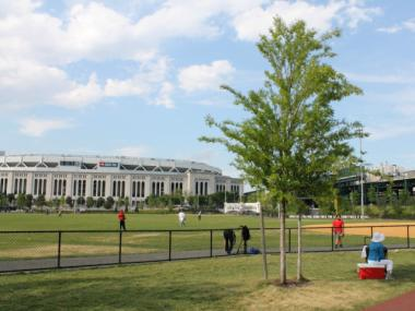 A man assaulted two Parks Department employees on July 6, 2012 at Macombs Dam Park next to Yankee Stadium.