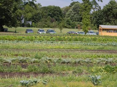 Snug Harbor's Heritage Farm will provide their organic produce to Livingston restaurant Blue.