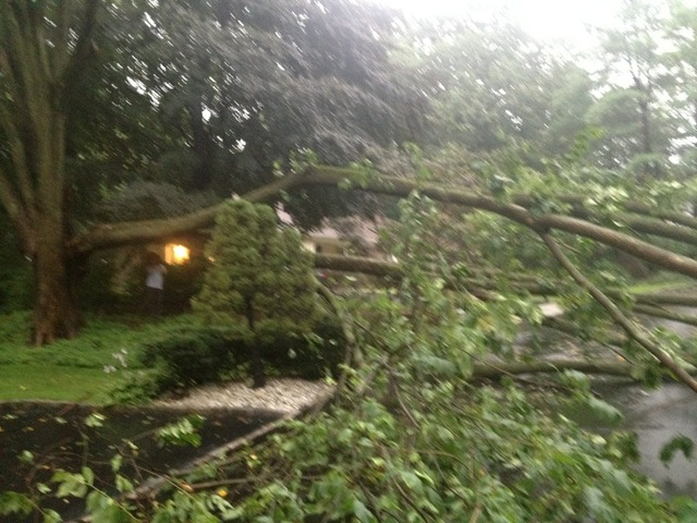 Pix11 reporter Arthur Chi'en posted this picture and wrote, 'Storm rolling thru our area takes out massive tree.'""