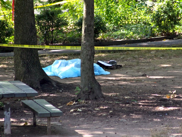 The body of a 14-year-old boy in a Bronx park on July 27, 2012.
