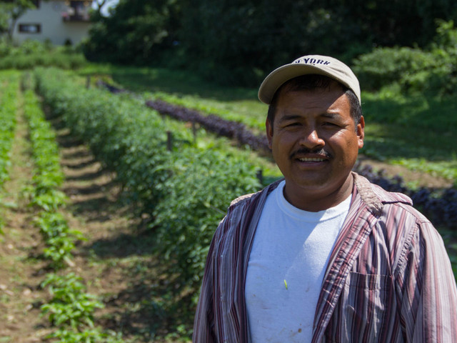 Gudelio Garcia, 46, of Port Richmond, started El Poblano Farm in 2010 with an acre at Decker Farm, New Springville. He now has three acres in New Jersey and has started a Kickstarter campaign to raise more money to expand.