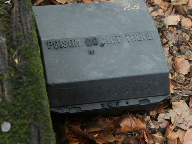 A rat bait box outside the Museum of Natural History.