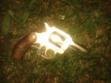 A .32 caliber gun recovered from a robbery-shooting on Linden Boulevard on August 4, 2012.