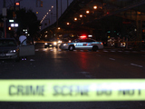 Cops Catch Driver in Fatal Sunset Park Hit-and-Run