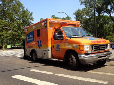 Two children, 7 and 8, were hit at the entrance to Central Park, near Center Drive, on August 9, 2012.