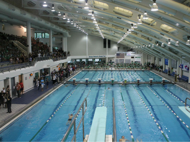 The pool at the Asphalt Green.