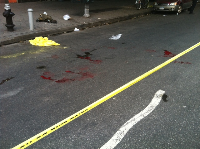 Blood at the scene were an officer shot a dog at East 14th St. and Second Avenue on August 13, 2012.