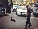 VIDEO: Cop Shoots Pit Bull in East Village