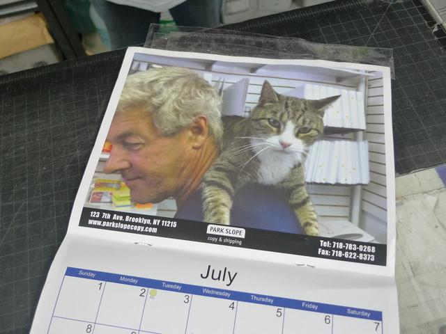 Park Slope Copy Center's calendar depicts one of the store cats in a tender moment with a customer.