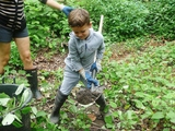 Volunteers Battle Invasive Plants in the Bronx River Forest