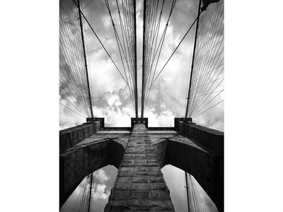 <p>The iconic Brooklyn Bridge is one photo subject in the collection.</p>