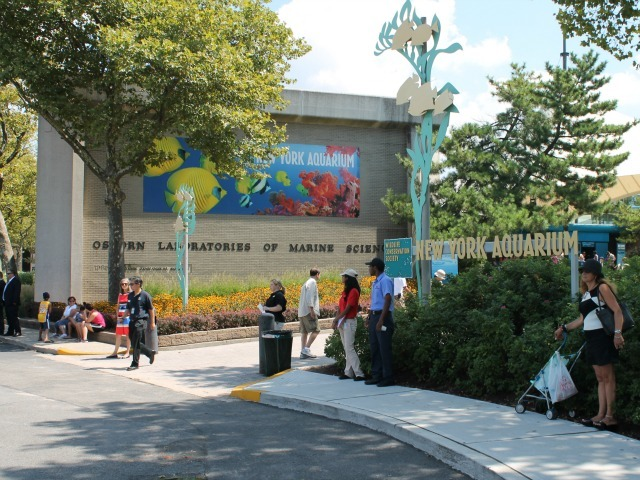 The New York Aquarium attracts about 750,000 visits a year.