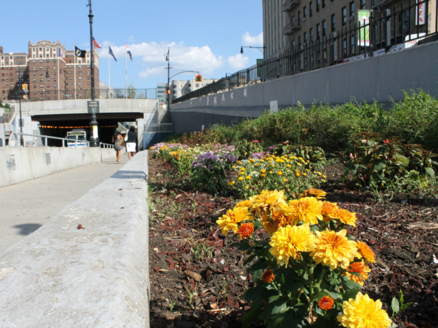 The 161st St. BID led the restoration of the neglected flowerbeds between Gerard and Walton Avenues. Now the Transportation Department will turn over maintenance duties to the group.