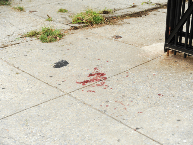 Blood from one victim is seen outside of PS 187 on the corner of Chauncey Street and Saratoga Avenue where he ran for help on Tuesday August 28th, 2012.