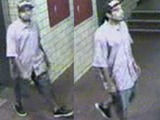 Police Seek Stabber in the South Bronx