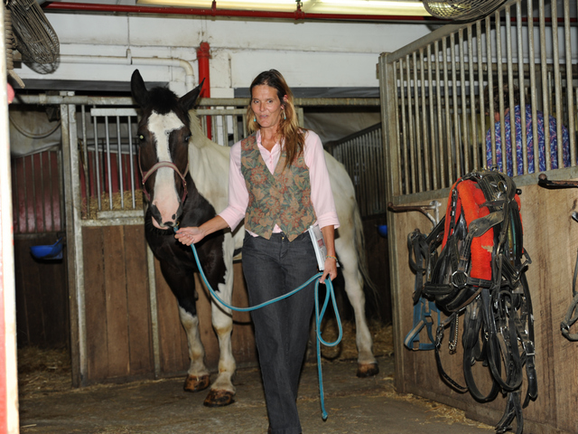 Oreo is removed from his stall by Pamela Rickenbach of Blue Star Equiculture at the Clinton Park Stables on Wednesday August 29th, 2012.