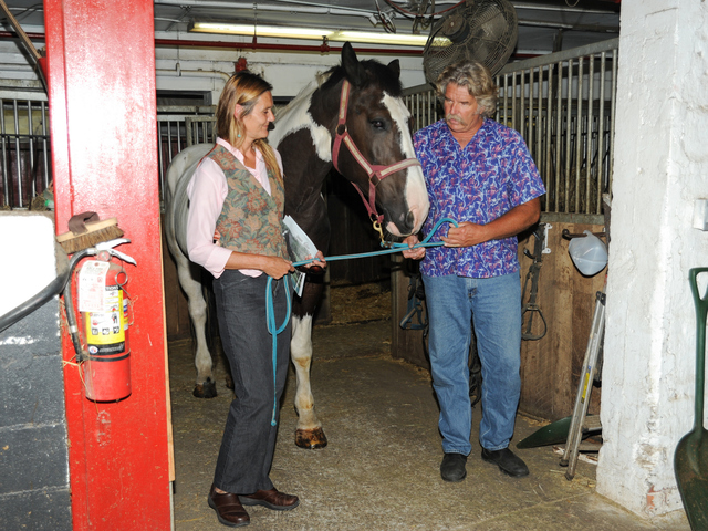 Pamela Rickenbach of Blue Star Equiculture and another stable employee stand with Oreo at the Clinton Park Stables on Wednesday August 29th, 2012.
