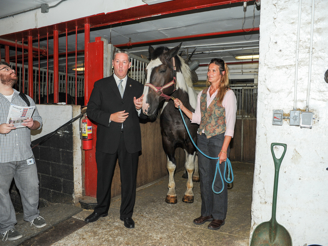 Pamela Rickenbach of Blue Star Equiculture and Steve Mallone, spokesperson for the Horses Carriage Association of New York, stand with Oreo at the Clinton Park Stables on Wednesday August 29th, 2012.