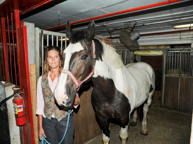 Pamela Rickenbach of Blue Star Equiculture stands with Oreo at the Clinton Park Stables on Wednesday August 29th, 2012.