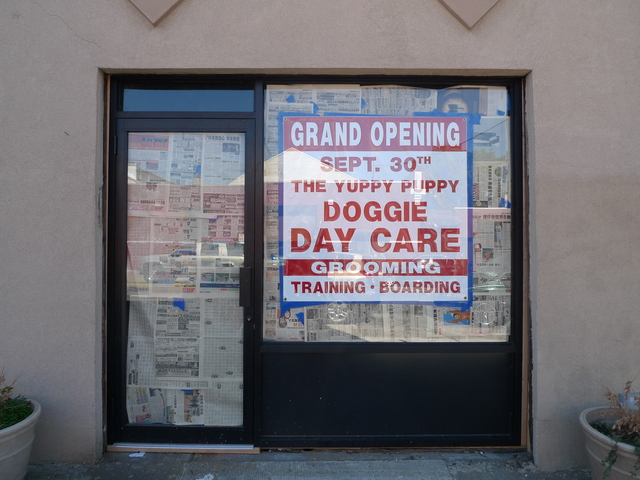 A new doggie daycare business is slated to open soon on Union Street in Gowanus, on the same block where the Royal Palms Shuffleboard Club wants to open.