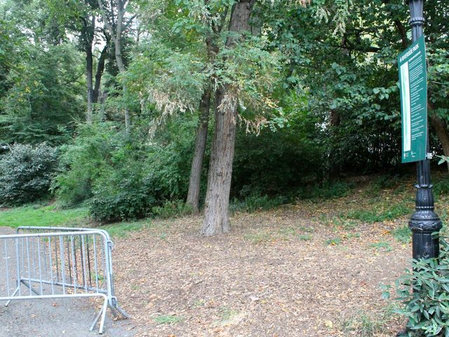 A 19-year-old woman was allegedly raped in Riverside Park on the Upper West Side.