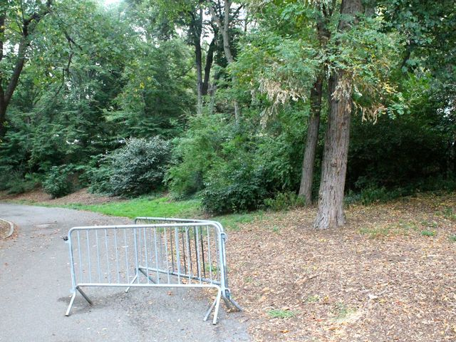 A 19-year-old woman told cops she was raped in Riverside Park on the Upper West Side on September 4, 2012.