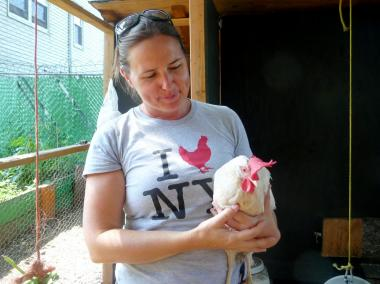 A group of volunteers at Brook Park in Mott Haven tend to a coop of 15 chickens, and the birds even have a social media presence, with their own blog and a Twitter account.