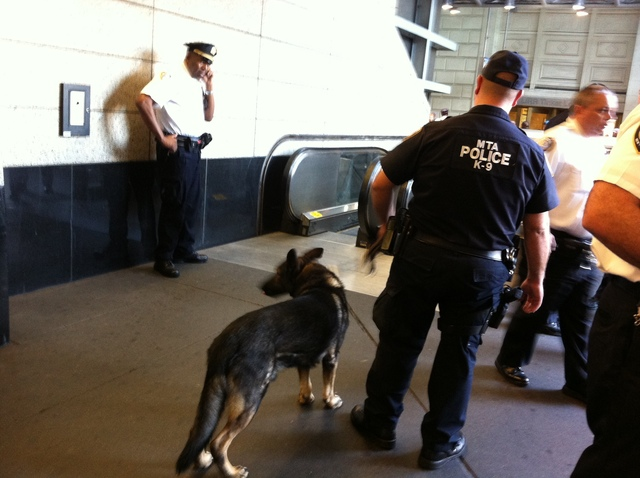 MTA police at the scene of a double stabbing inside an LIRR station in Jamaica, Queens, Wednesday Sept. 12, 2012.