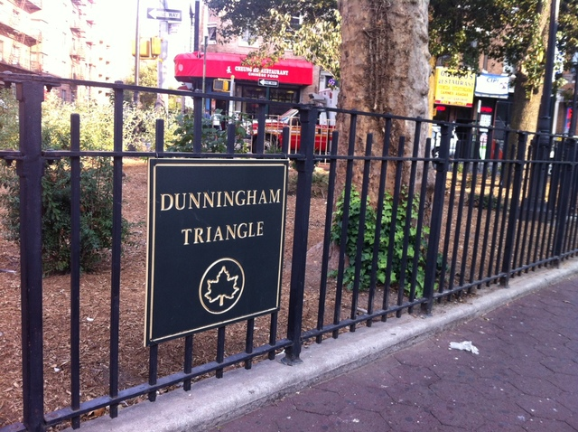 <p>Dunningham Triangle, which is undergoing a $200,000 capital budget makeover.</p>