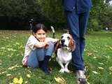 Brooklyn Basset Hounds Take Slope by Storm