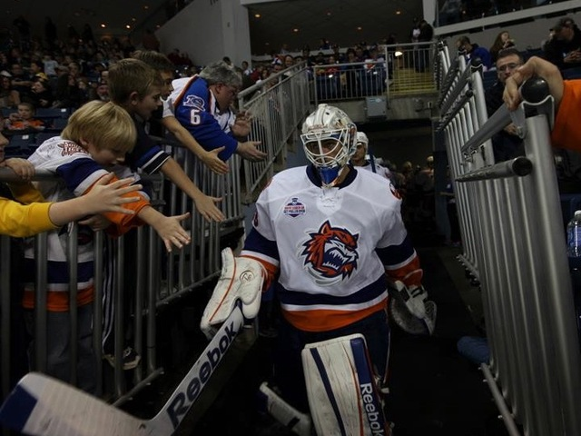 <p>The Bridgeport Sound Tigers, the AHL affiliate of the New York Islanders, take the ice at Webster Bank Arena in Bridgeport, Conn.</p>