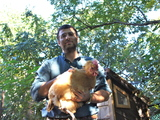 Crown Heights Homesteaders Reimagine Kosher Meat, One Chicken at a Time