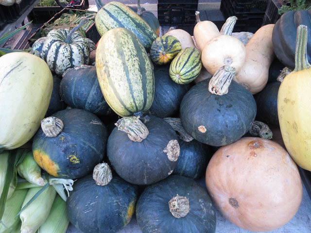 <p>Harlem residents could get a wide variety of gourds at the neighborhood&#39;s first-ever nighttime farmers market on Oct. 11, 2012.&nbsp;</p>