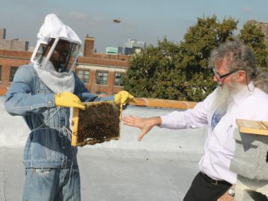 Participants in an Osborne Association program for young men learn about beekeeping.