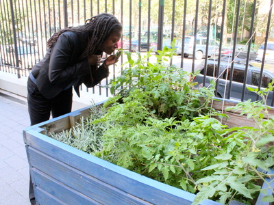 <p>School principal Darlene Despeignes,&nbsp; is working on developing a student-run garden at the S.T.A.R Academy on East Fourth Street.</p>