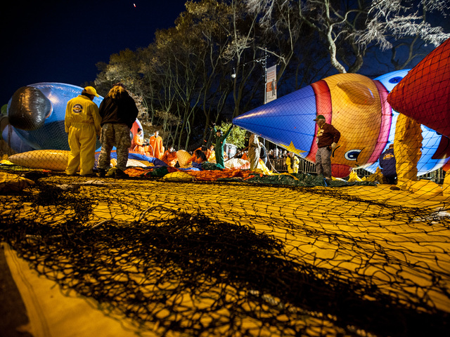 <p>Balloon technicians for Macy&#39;s oversee the inflation of over 30 balloons for the annual Thanksgiving Day Parade on Nov. 21st, 2012.</p>