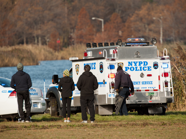 <p>Passersby watch as cops prepare to pull the pickup Meadow Lake in Forest Hills Monday morning, Nov. 19, 2012.</p>