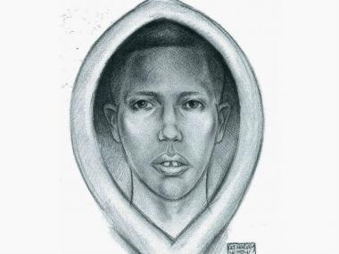 A young man between the ages of 12 and 14, who police say is suspected of grabbing a woman in Central Park on Nov. 9, 2012.