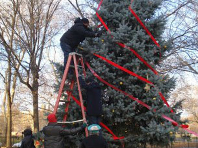 <p>Volunteers one past year decorated the Geraldo Tree, known as the &quot;nondenominational but festive winter tree.&quot; Now neighbors hope to plant a new tree in its place and to use the fallen tree for benches in the dog park.&nbsp;</p>