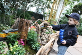 'Holiday Train Show' Chugs to Life at the New York Botanical Garden