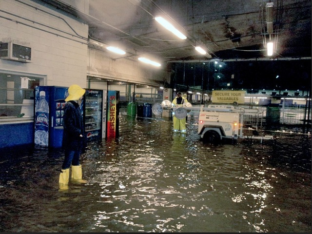 <p>The tunnel to the Pier 40 courtyard fields also filled with water.&nbsp;</p>