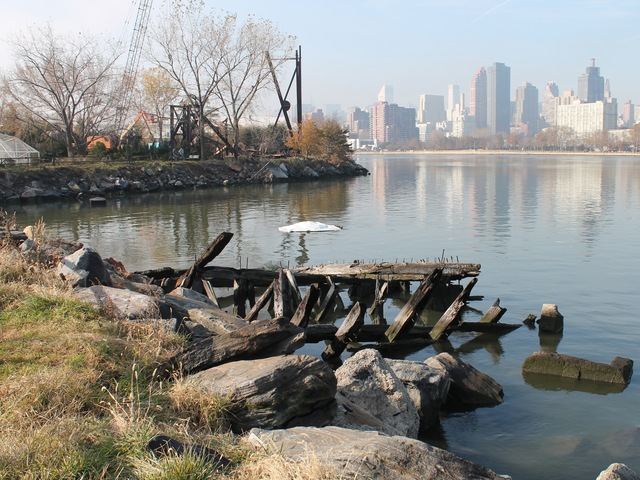 <p>Socrates Sculpture Park lost many trees and its shoreline was eroded.</p>