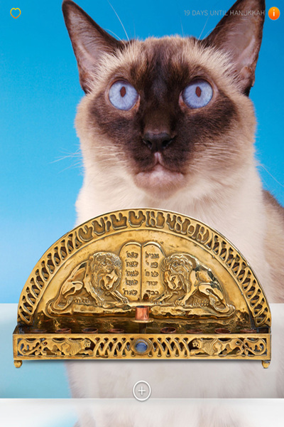 <p>&quot;Light My Fire,&quot; the Jewish Museum&#39;s new Hanukkah app, allows users to select a cat backdrop.</p>
