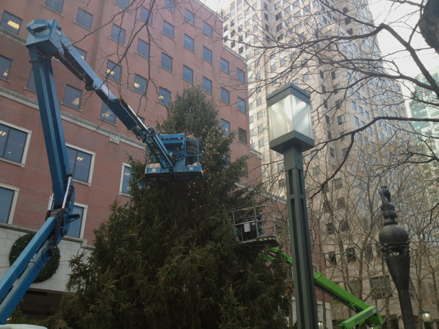 <p>A 50-foot Christmas tree will be lit in MetroTech Commons on Tuesday night.</p>