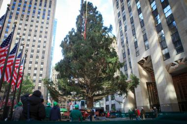 After surviving Hurricane Sandy, the Rockefeller Center Christmas Tree found its new home on Wednesday.