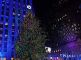 Rockefeller Center's 80-Foot Christmas Tree Sparkles at Lighting