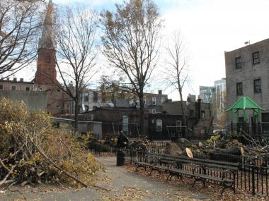 "Hunters Point residents are devastated after Hurricane Sandy destroyed trees at a neighborhood playground known as ""Shady Park."""