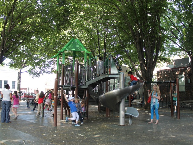 <p>Before Hurricane Sandy, the trees at Andrews Grove Playground were like an umbrella.</p>