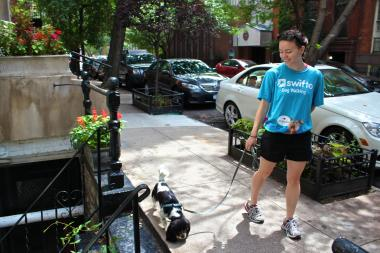 Swifto's new feature answers dog owners' top demand, the company's representative said.