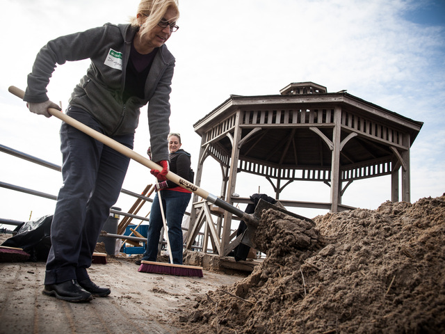 <p>Gerry D., a local volunteer helps with the Coney Island Beach cleanup on Nov. 10, 2012.</p>